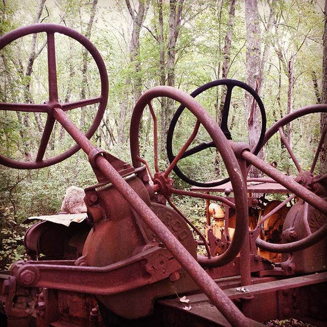 Farm equipment relics in the forest
